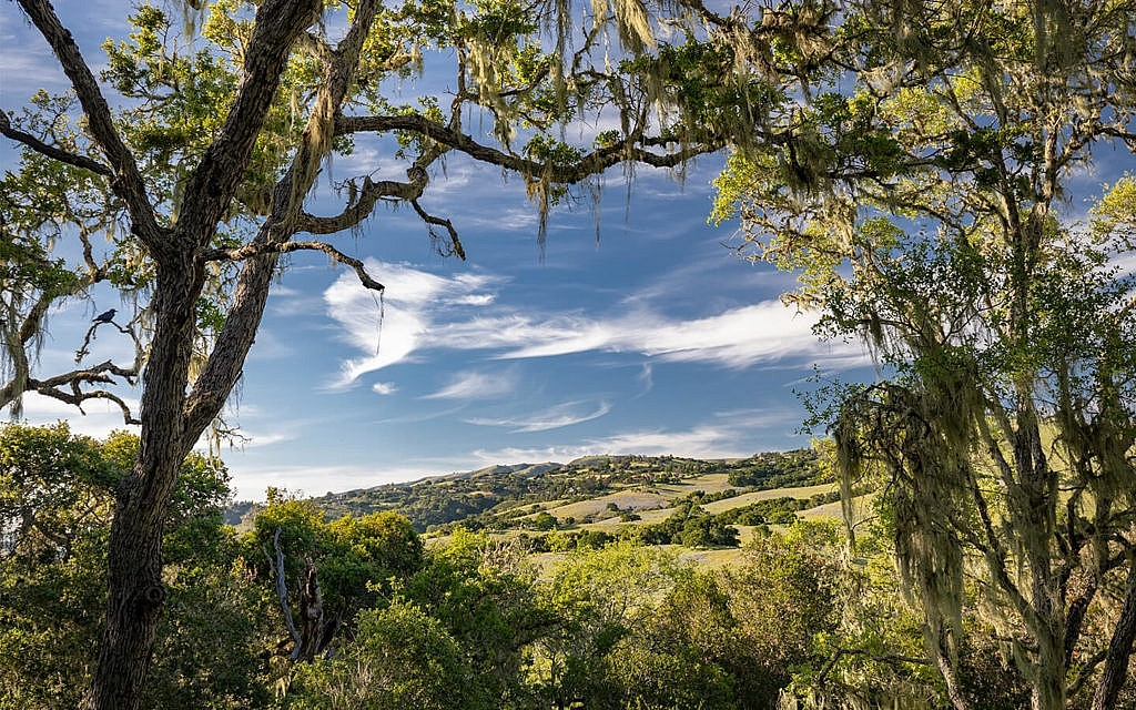View from Camp Carmel Valley